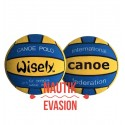 Ballon WISELY, Taille 5, icf